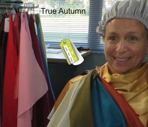 True Autumn iYi Drapes 2