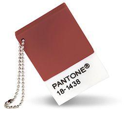 Marsala Pantone Chip