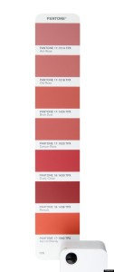 Pantone Closely Relate to marsala